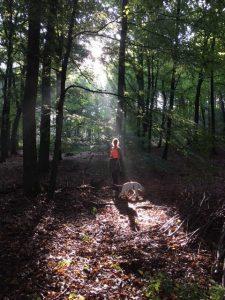 wandelcoaching bij een burn-out